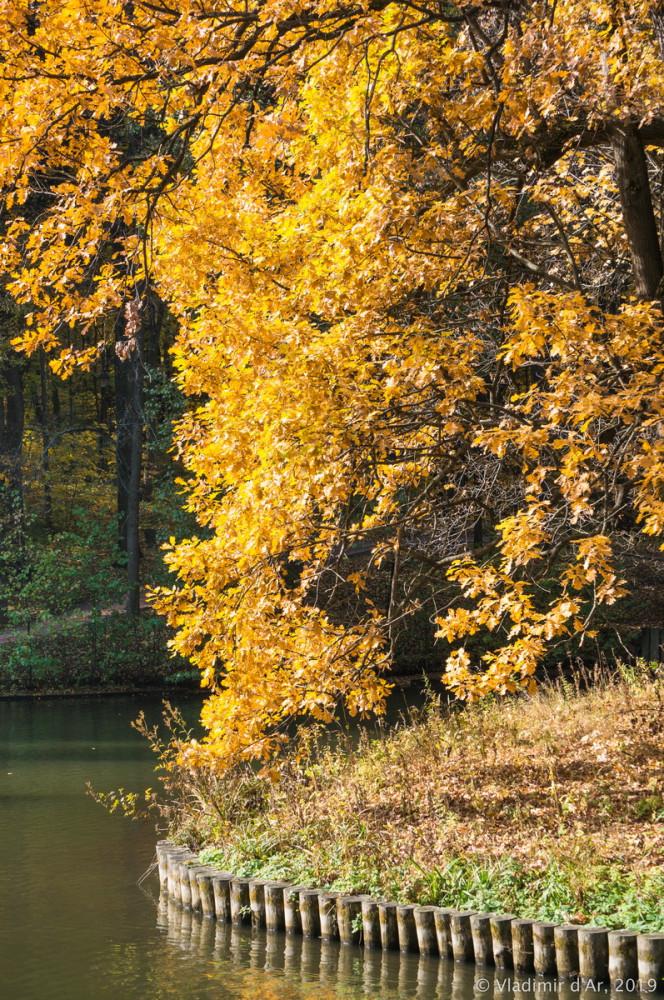 Царицыно - золотая осень 2019 - 066.jpg