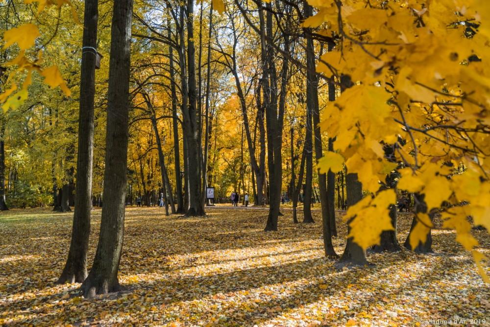 Царицыно - золотая осень 2019 - 075.jpg