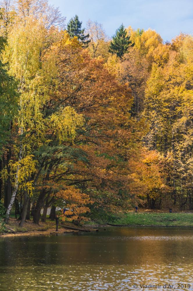 Царицыно - золотая осень 2019 - 079.jpg