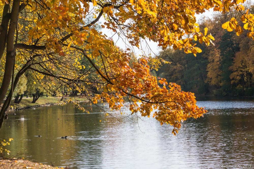 Царицыно - золотая осень 2019 - 089.jpg