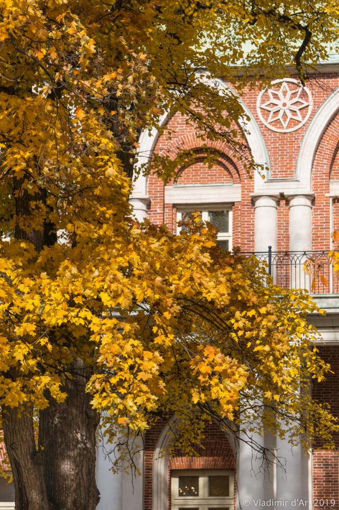 Царицыно - золотая осень 2019 - 121.jpg