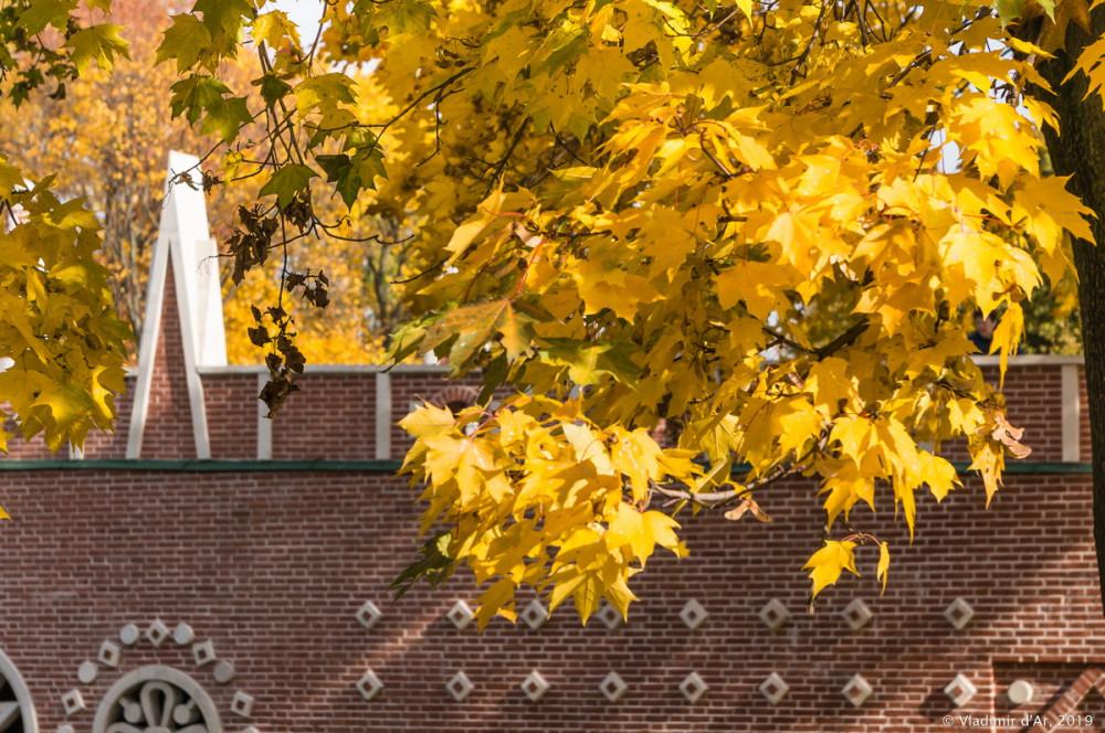 Царицыно - золотая осень 2019 - 151.jpg