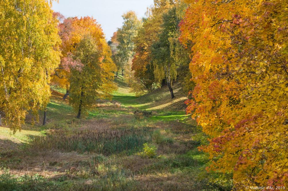 Царицыно - золотая осень 2019 - 152.jpg