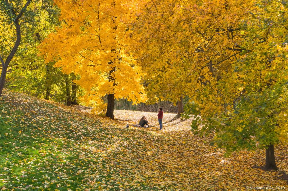 Царицыно - золотая осень - 2019 - 179.jpg