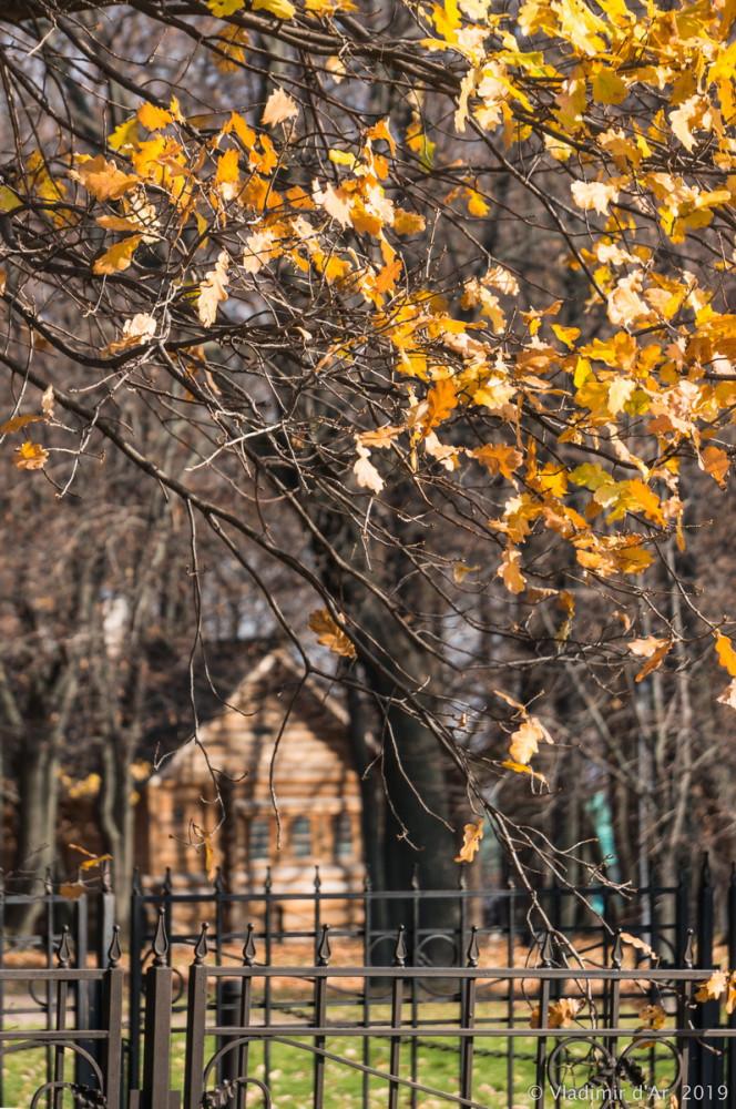 Коломенское - золотая осень - 2.jpg