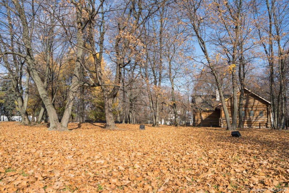 Коломенское - золотая осень - 13.jpg