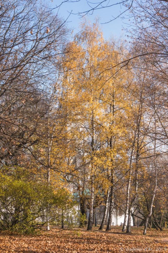 Коломенское - золотая осень - 40.jpg