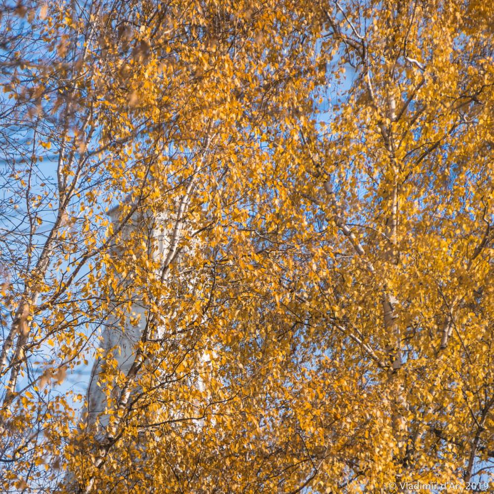 Коломенское - золотая осень - 41.jpg
