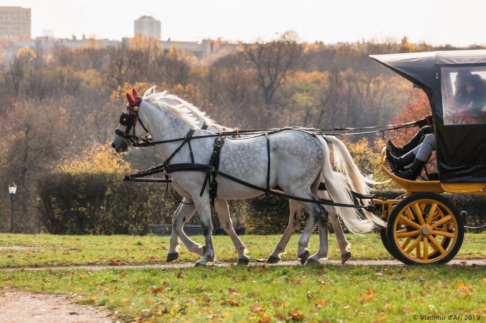 Коломенское - золотая осень - 50.jpg