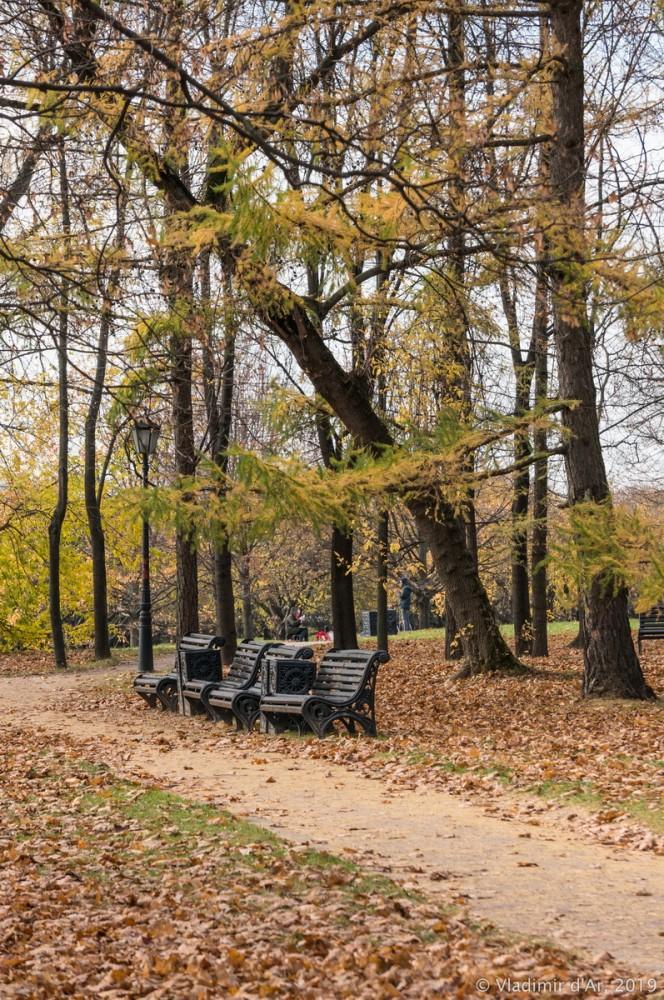 Коломенское - золотая осень - 65.jpg