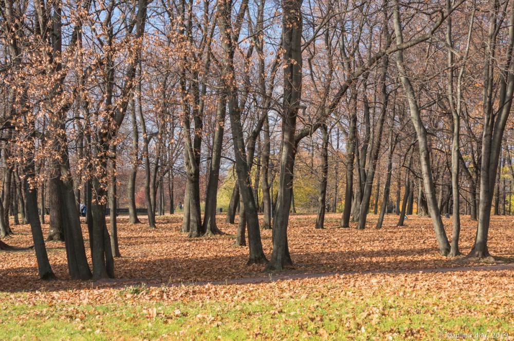 Коломенское - золотая осень - 72.jpg