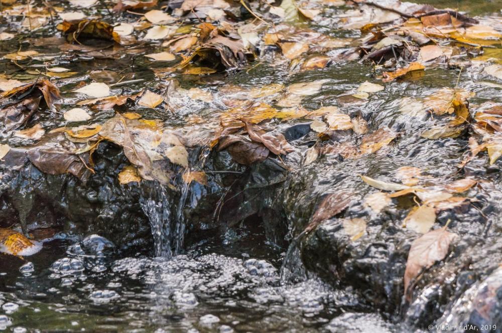 Коломенское - золотая осень - 98.jpg