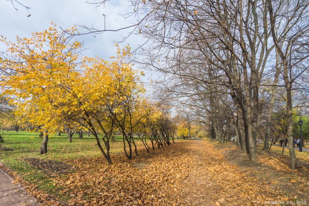 Коломенское - золотая осень - 104.jpg