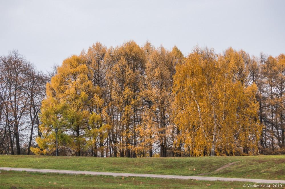 Коломенское - золотая осень - 105.jpg