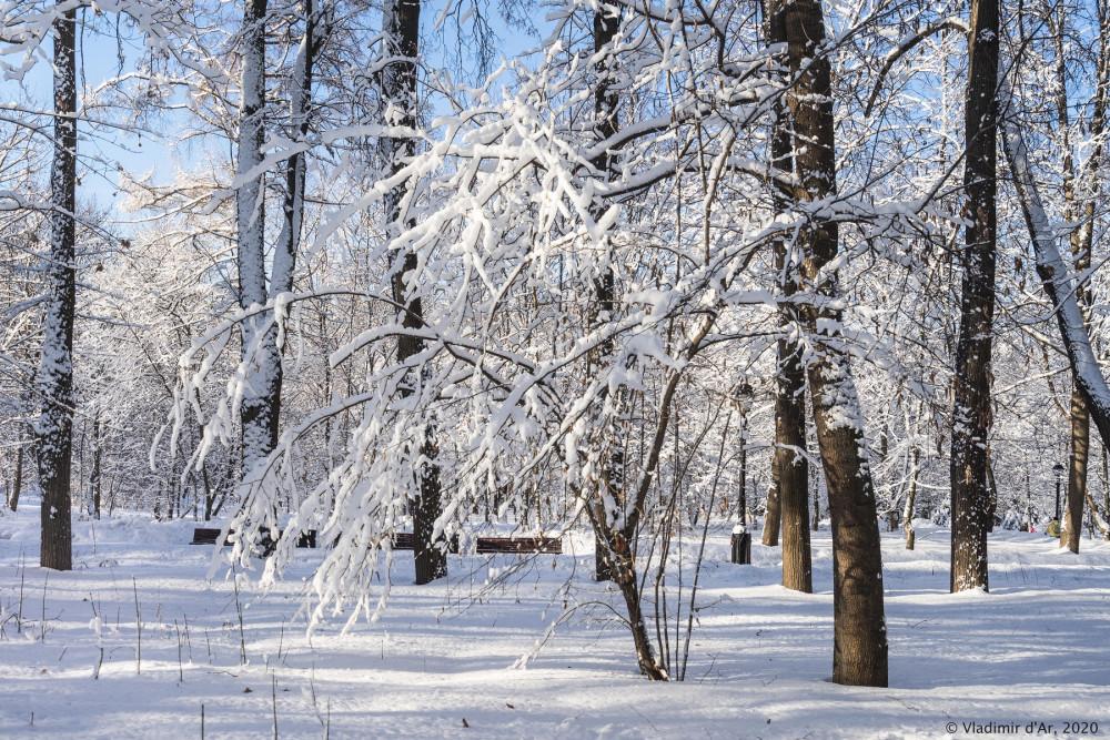 Зима - 207.jpg