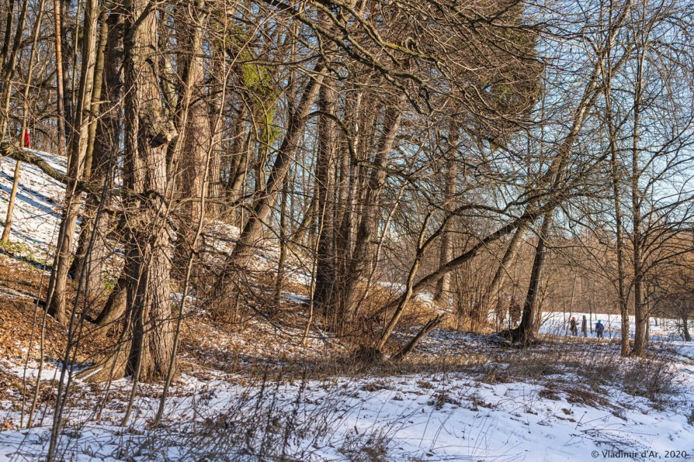 Царицыно - зима - 119.jpg