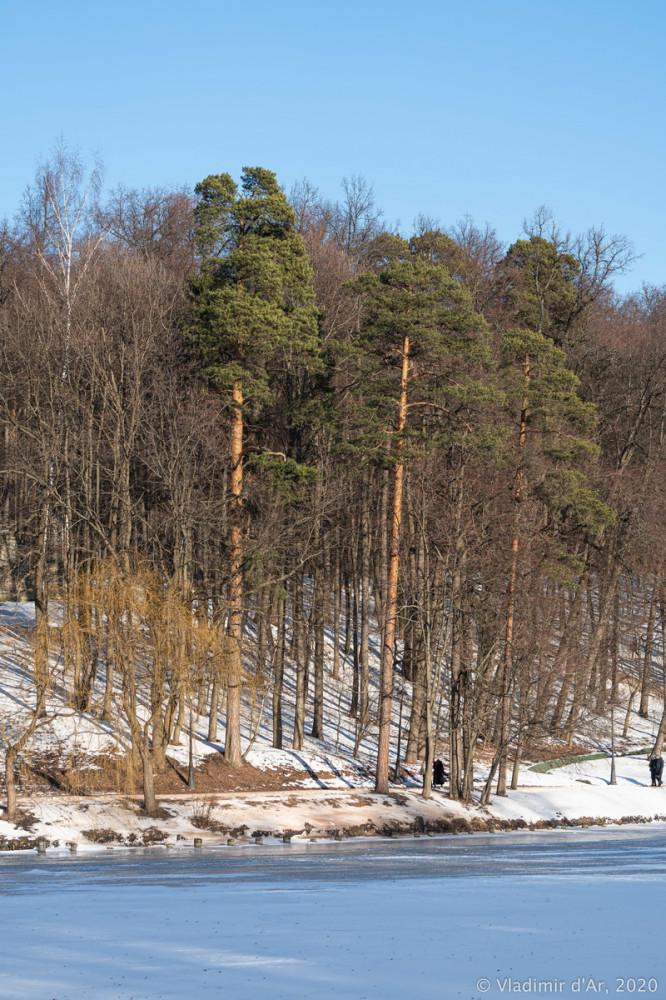 Царицыно - зима - 206.jpg