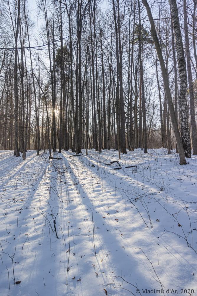 Царицыно - зима - 207.jpg