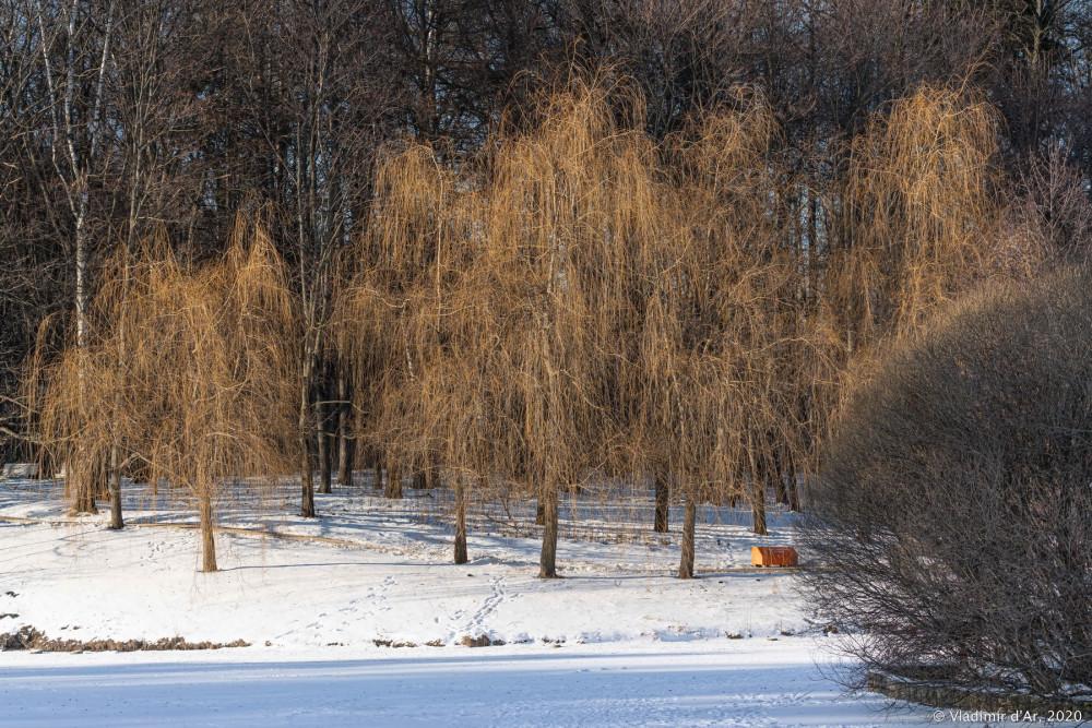 Царицыно - зима - 208.jpg