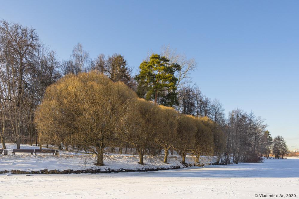 Царицыно - зима - 216.jpg