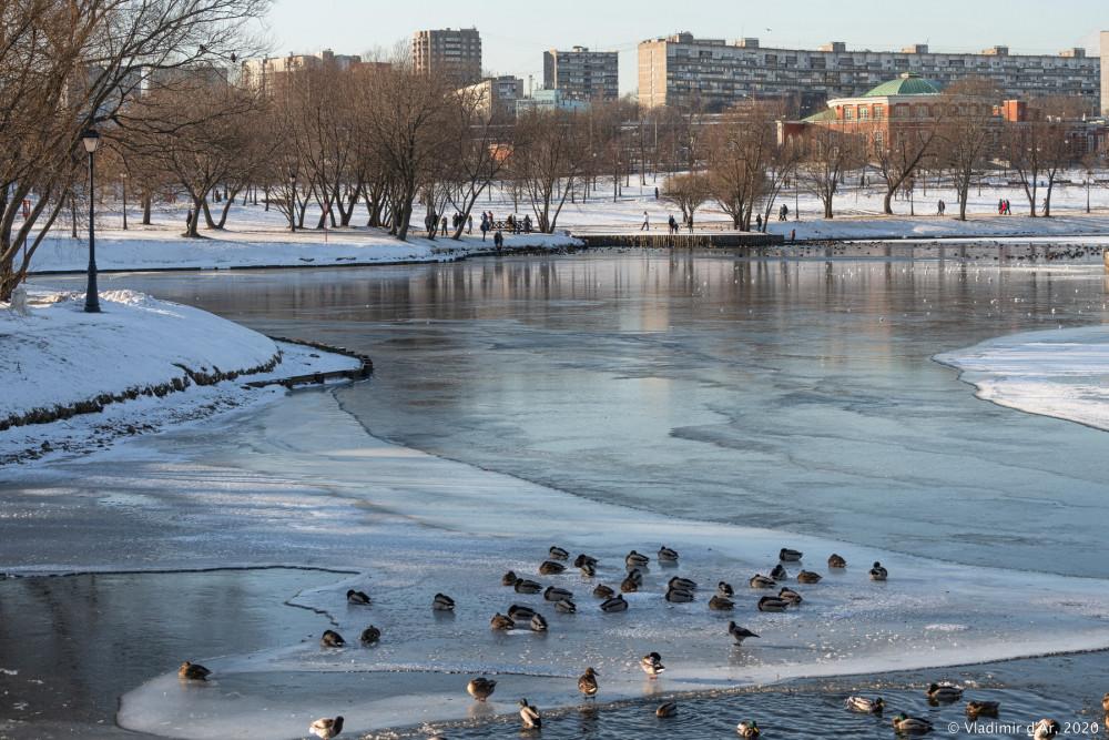 Царицыно - зима - 232.jpg