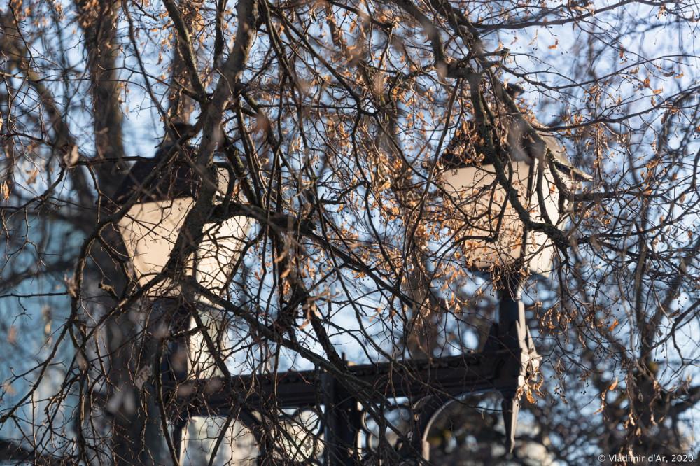 Царицыно - зима - 310.jpg