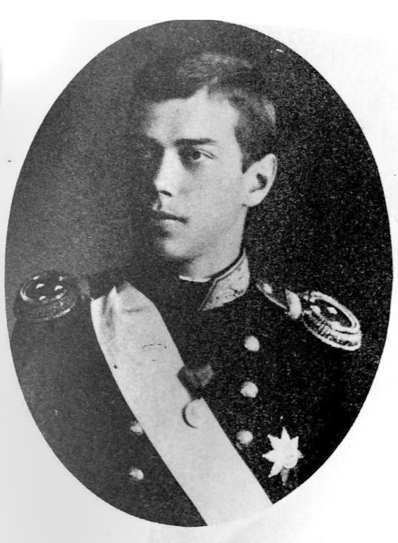 17. Цесаревич Николай Александрович