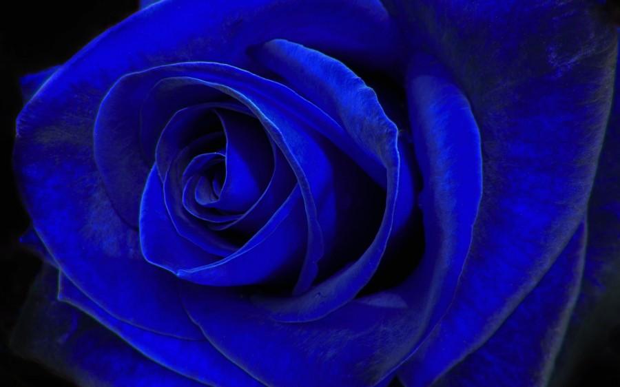 Темно синее картинка