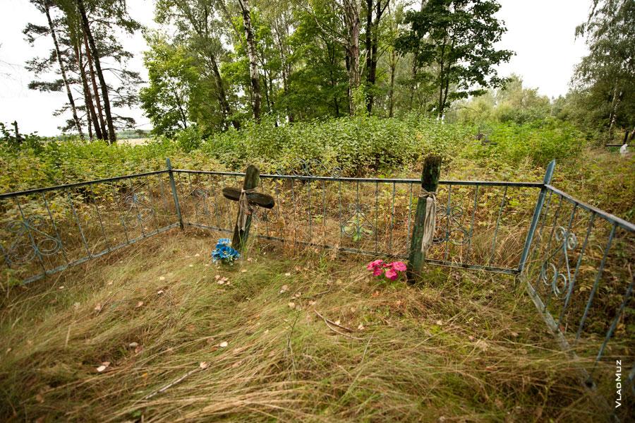Белоруссия, Гомельская область. Два старых креста на кладбище