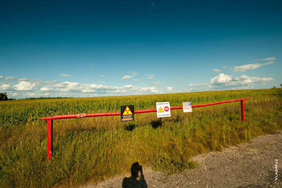 Белоруссия, Гомельская область. Радиоактивность. За запрещающим барьером - поля кукурузы