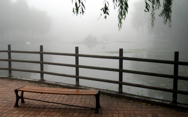 скамейка у пруда