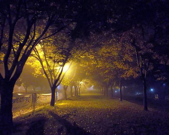 Ночь_2