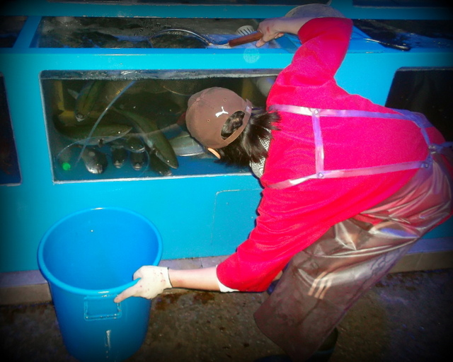 повар ловит рыбу