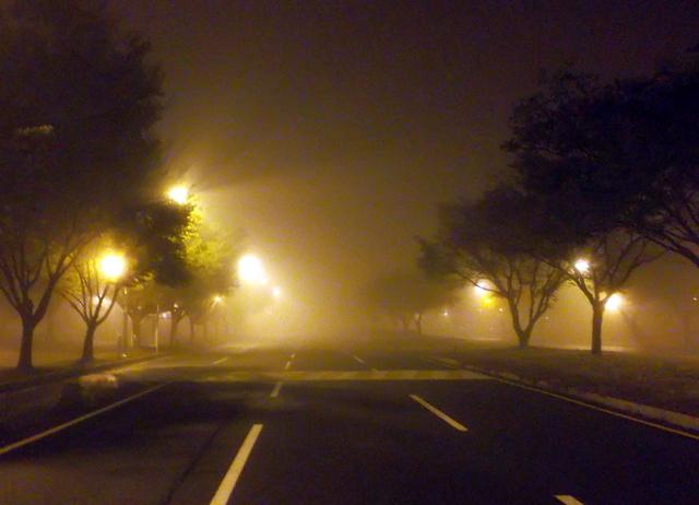 туман_5