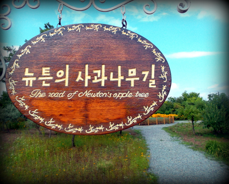 Дорога к яблоне Ньютона