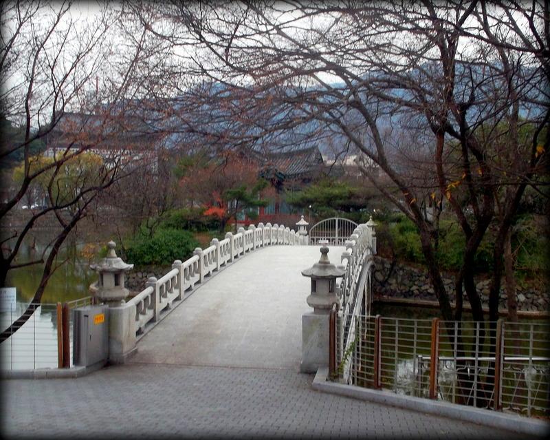 Парк Турю_1