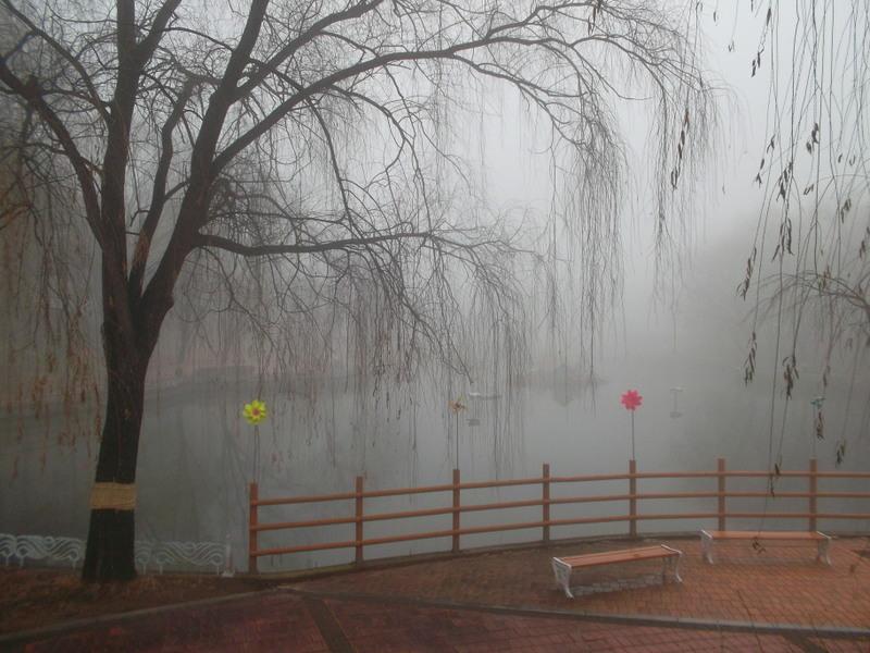 туман_3