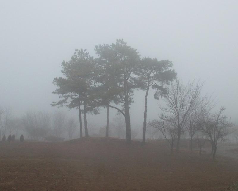 туман_6