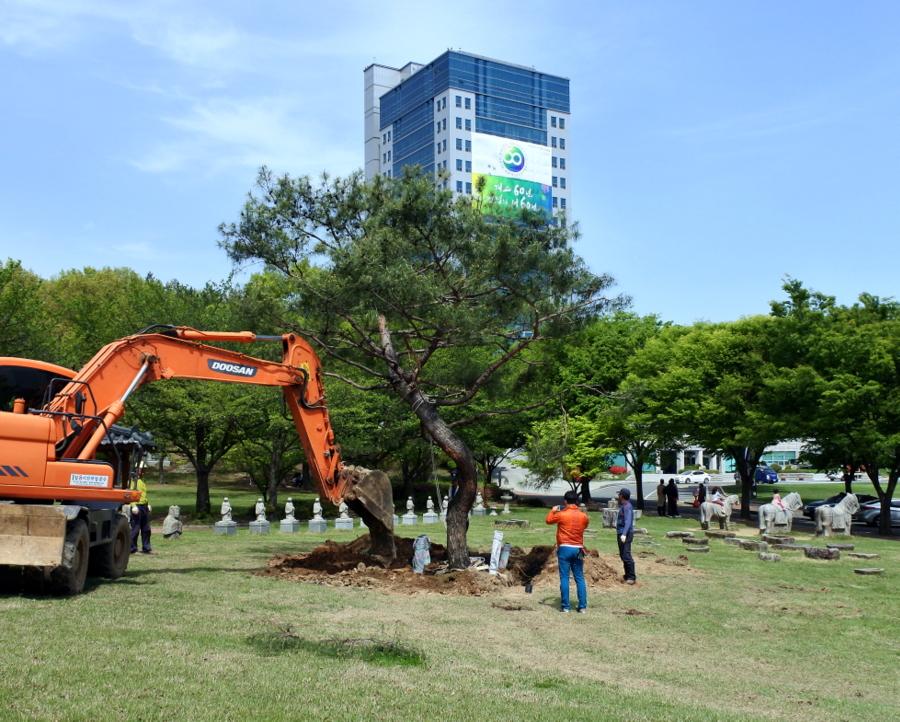 дерево_9