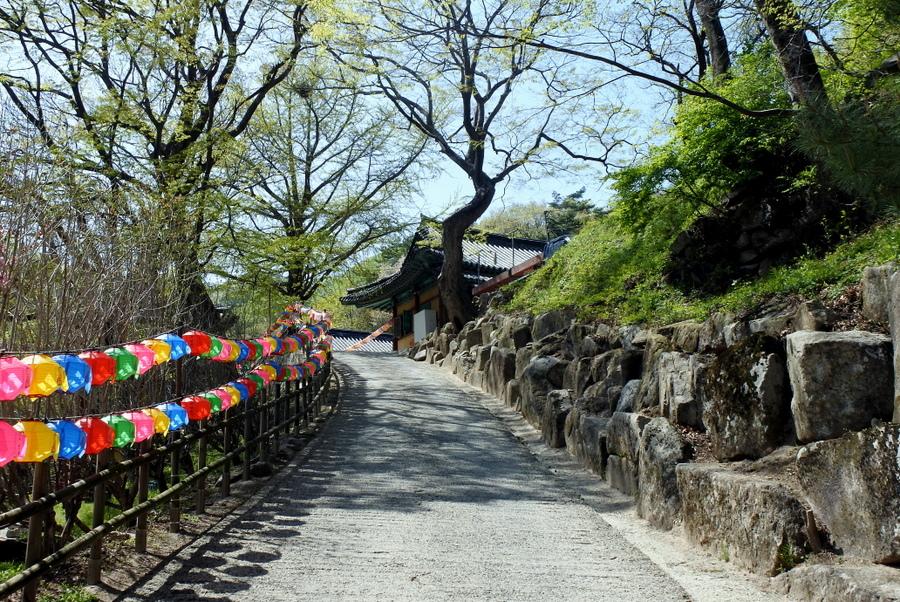 Монастырская дорога