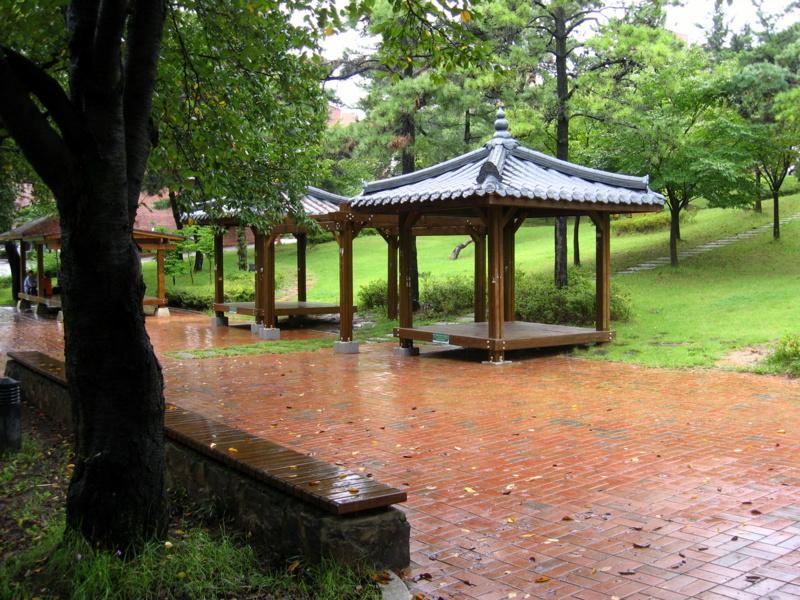 Университет Тэгу. Кампус. Дождь