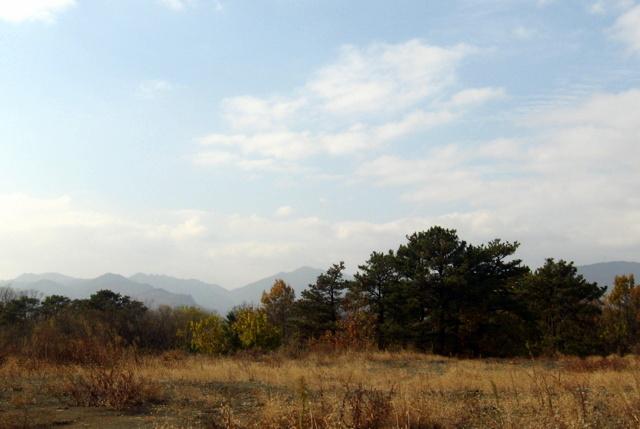 Южная Корея. Ноябрь