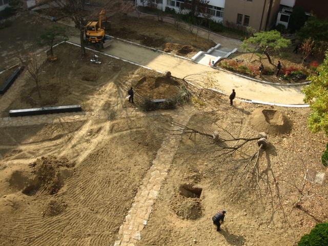 Реконструкция двора-4