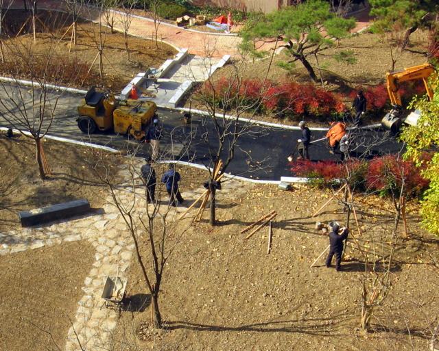 Реконструкция двора-9