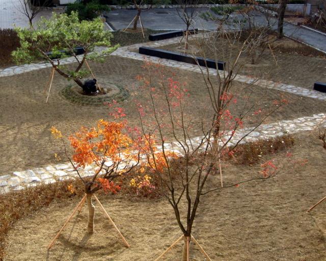 Реконструкция двора-10