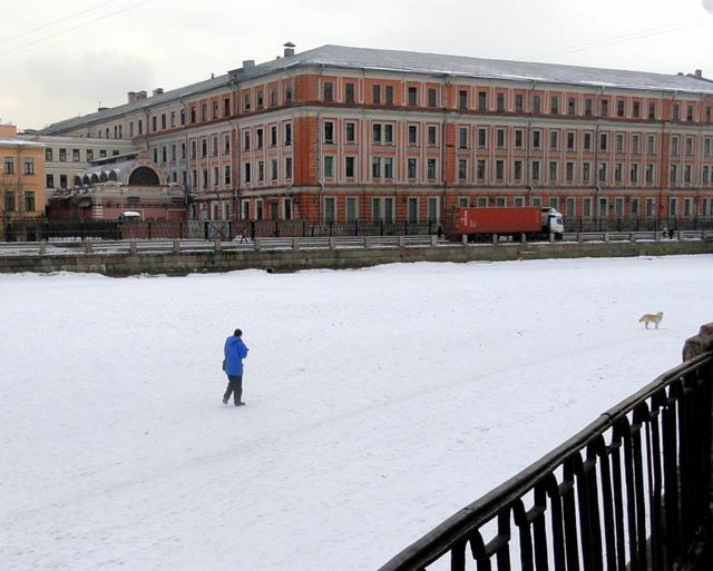 Выгуливание собаки на льду Фонтанки