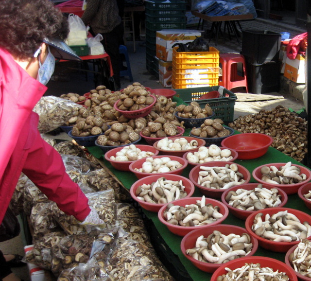 Хаян. Рынок. Грибы