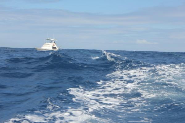На волнах Атлантики