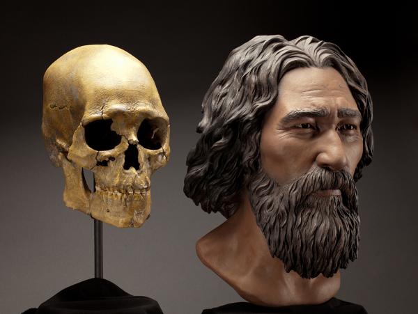 Североамериканский Kennewick man 9500 лет, очевидно с высоким процентом ANE.png