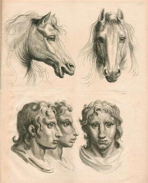 fig-05-charles-le-brun-cavalo.jpg